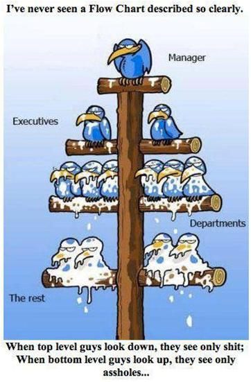 Corporate Flow Chart