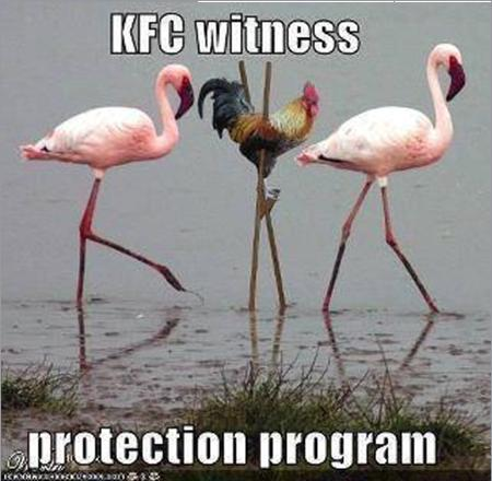 KFC Protection Program