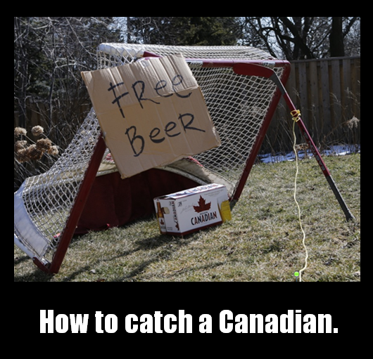 catch a canadian